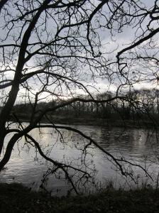 River Ribble in Winter