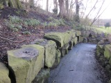 Avenham and Miller Parks,Preston
