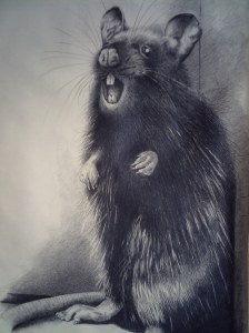 Mouse by Gary Wiggins