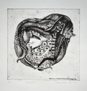 Cephalopod by Kathryn Poole