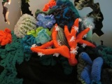 Coral: Something Rich and Strange at Manchester Museum