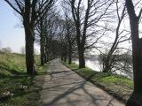 Sunshine cycle to Brockholes NatureReserve